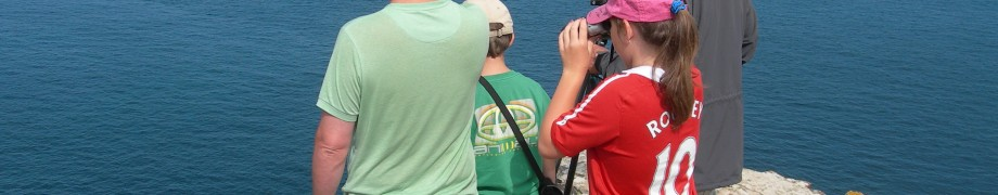 Cetacean, shark and seal watch at St Agnes Head
