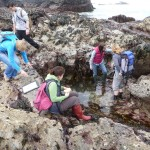 Shore survey at St Agnes VMCA