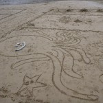 Sand Octopus at St. Agnes